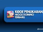 Kode penukaran higgs domino terbaru, dapatkan chip gratis